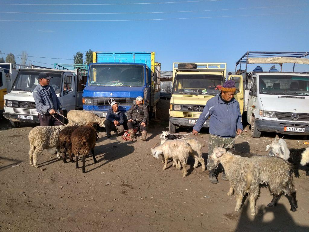 El mercado de animales se celebra cada domingo en Karakol